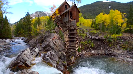 dead tree : Crystal Mill Wooden Powerhouse located on Crystal River Colorado