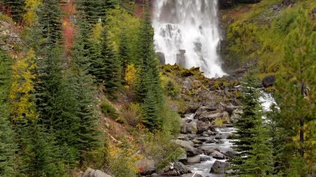 tornanti : Tumalo Falls Deschutes National Forest vicino Bend Oregon