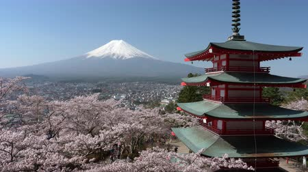 beautiful place : Mt. Fuji over a Pagoda and Cherry Blossoms