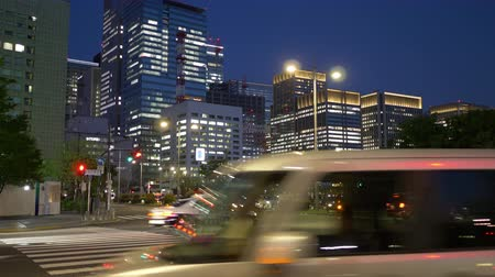 thoroughfare : Traffic in the Central Tokyo at Night