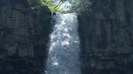 mês : Banjo Waterfall in Izu Peninsula (tilt downslow motion)