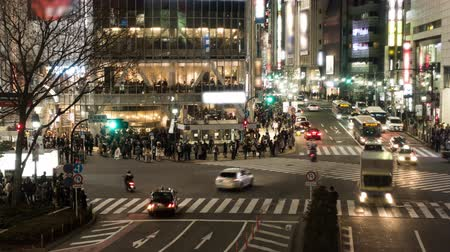 neon lights : Shibuya Crossing in the Evening (time lapse, tilt down)