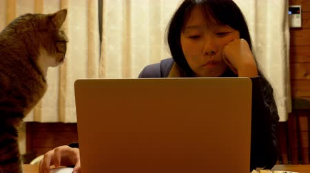 cheirando : Asian Woman Using a Laptop Computer in a Dining Room With a Cat