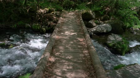 wooden bridge : Bridge Across a Rapid Stream in the Mountain Stock Footage