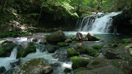 nazomer : Waterfall in a Mountain Forest Captured on a Sunny Spring Day (slow motion):Tateshina Ootaki Falls in Nagano Prefecture, J APAN
