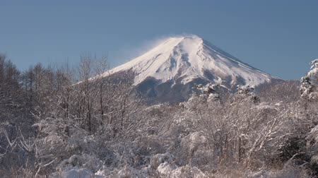 fujiyama : Mt. Fuji over a Stream and Snowy Forest (real timetilt up)