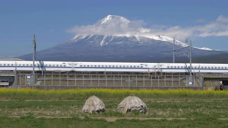 shinkansen : Bullet Train Passing by with Mt. Fuji in the Background