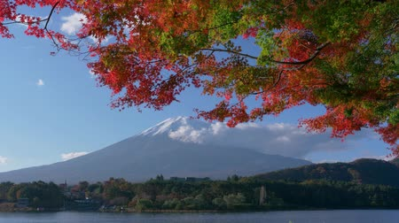 escarlate : Mt. + Fuji + with + Maple + Leaves + in + Red + at + Lake + Kawaguchi + in + Autumn +% 28tilt + down% 29% 29