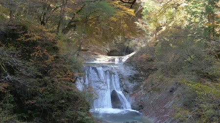 sons : Five Steps Seven Pools Falls in Nishizawa Gorge. Nishizawag Gorge is a popular travel destination in Yamanashi Prefecture, Japan.