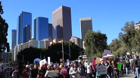 Protesters at the Womens March in Los Angeles