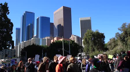 eşitlik : Protesters at the Womens March in Los Angeles