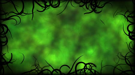 зеленый фон : Black Vines Border Background Animation - Loop Green