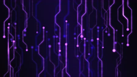 circuiti : Technology Abstract Circuit Background Animation - Loop Violet