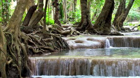 Канчанабури : Jangle landscape with flowing water of Erawan cascade waterfall at deep tropical rain forest. National Park Kanchanaburi, Thailand