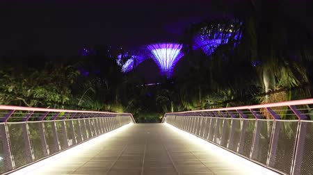 libélula : SINGAPORE - OCT 20, 2017: Fantastic night view of Dragonfly bridge illuminated by electric lights, surrounded by palm trees and leading to Supertree Grove of Gardens by the Bay. Camera zooms out.