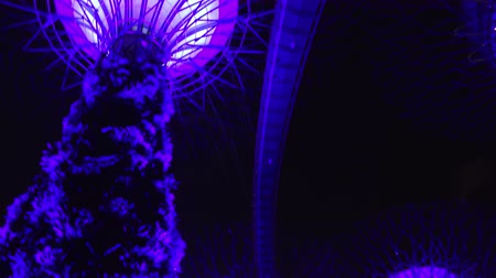 SINGAPORE - OCT 20, 2017: Panoramic bottom view of futuristic giant super trees glowing purple at night. Supertree Grove of Gardens by the Bay. Amazing scenery with astonishing touristic landmark.