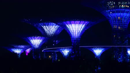 SINGAPORE - OCT 20, 2017: Fantastic night view of Supertree Grove of Gardens by the Bay. Giant futuristic super trees illuminated in dark sky by blue light. Popular touristic landmark zoom out video Stok Video
