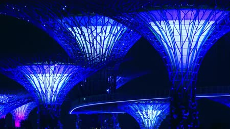 SINGAPORE - OCT 20, 2017: Fantastic night view of Supertree Grove of Gardens by the Bay. Giant futuristic super trees illuminated in dark sky by blue light. Popular touristic landmark panoramic video