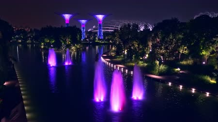 libélula : SINGAPORE - OCT 21, 2017: Magnificent fountains at Dragonfly Lake in front of Gardens by the Bay against Supertree Grove with tall artificial trees on background.