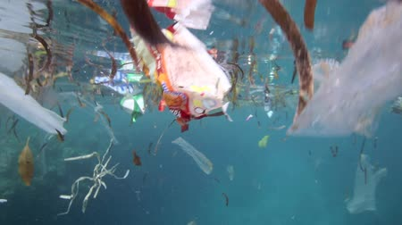 plastics : Plastic bags and other garbage floating underwater over fragile coral reef in Bunaken Island, Sulawesi