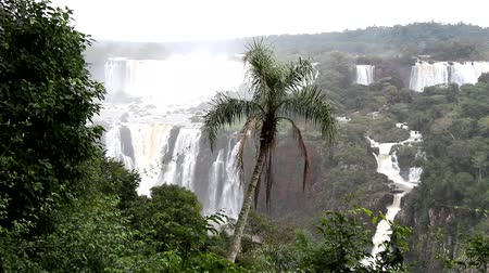 panorâmico : Iguazu Falls in the Iguazu National Park. Brasil Stock Footage