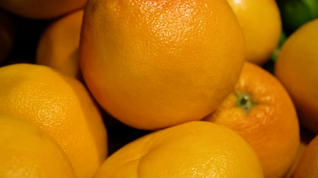 grejpfrut : grapefruit harvest. many grapefruits. grapefruit top view on fresh fruit market Wideo