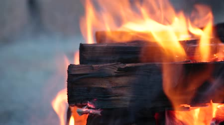 Close up of logs burning on a campfire