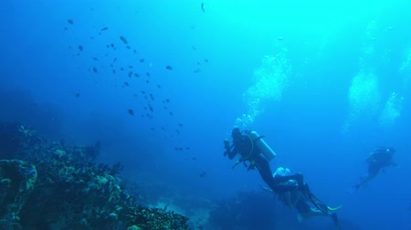 POV swim through of a reef to reveal divers in the Seychelles