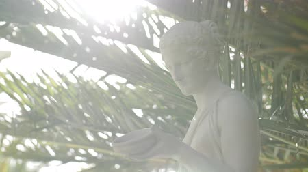 бюст : Slow motion track around a marble statue of a woman with palm leaves in the background