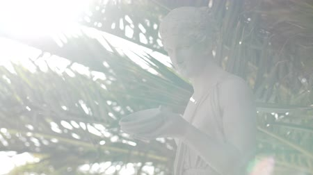 Венера : A marble statue of a woman with palm leaves and a lens flare Стоковые видеозаписи