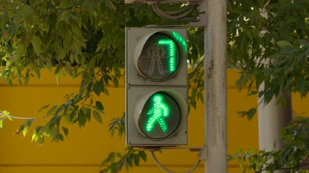peril : The traffic light for pedestrians on the street on a summer day on the background of green foliage of trees. The green light turns red, a countdown.