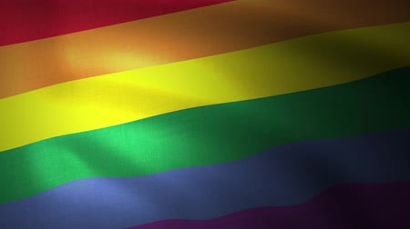 direitos : The rainbow flag, LGBT pride flag or gay pride flag waving at wind