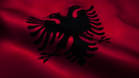 эмблема : Albania flag waving in the wind. National flag of Albania. Sign of Albania seamless loop animation. 4K