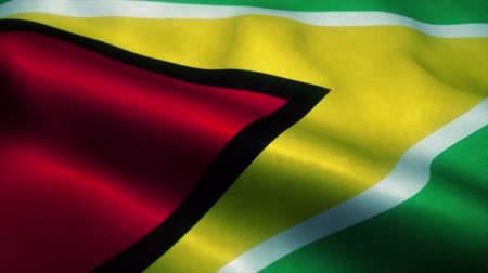 independence : Guyana flag waving in the wind. National flag of Guyana. Sign of Guyana seamless loop animation. 4K