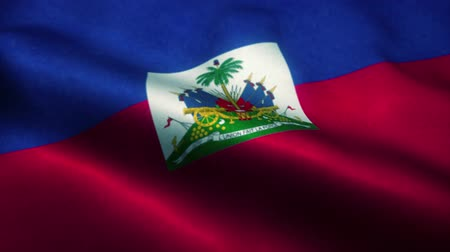 wapperende vlag : Haiti flag waving in the wind. National flag of Haiti. Sign of Haiti seamless loop animation. 4K