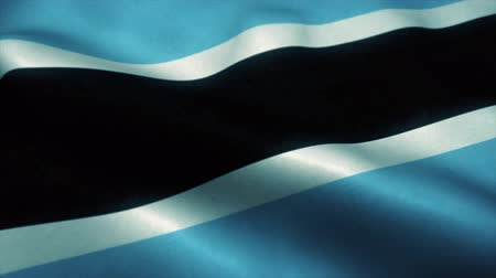 gurur : Botswana flag waving in the wind. National flag of Botswana. Sign of Botswana seamless loop animation. 4K Stok Video