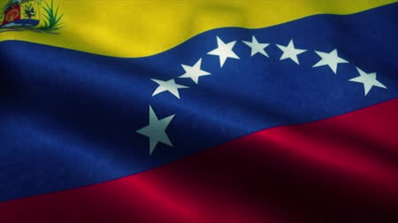 independence : Venezuela flag waving in the wind. National flag of Venezuela. Sign of Venezuela seamless loop animation. 4K Stock Footage