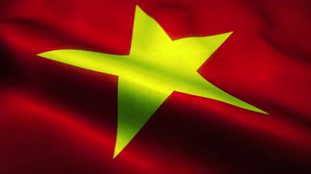 nacionalismo : Vietnam flag waving in the wind. National flag of Vietnam. Sign of Vietnam seamless loop animation. 4K