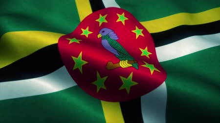 official : Dominica flag waving in the wind. National flag of Dominica. Sign of Dominica seamless loop animation. 4K Stock Footage