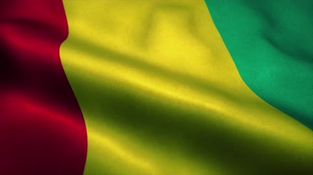 official : Guinea flag waving in the wind. National flag of Guinea. Sign of Guinea seamless loop animation. 4K