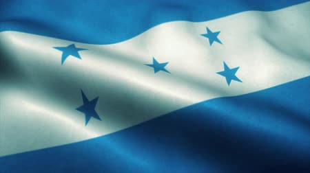 эмблема : Honduras flag waving in the wind. National flag of Honduras. Sign of Honduras seamless loop animation. 4K Стоковые видеозаписи