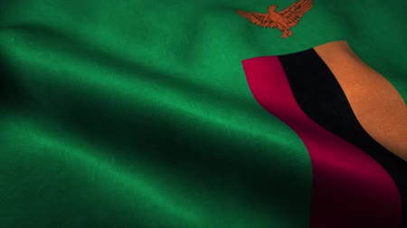 wapperende vlag : Zambia flag waving in the wind. National flag of Zambia. Sign of Zambia seamless loop animation. 4K Stockvideo
