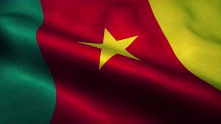 nacionalismo : Cameroon flag waving in the wind. National flag of Cameroon. Sign of Cameroon seamless loop animation. 4K