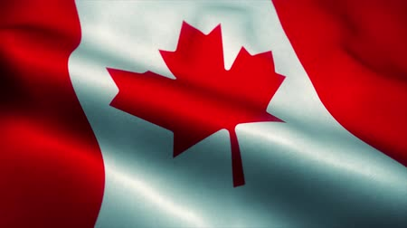canadian maple leaf : Canadian flag waving in the wind. National flag of Canadian. Sign of Canadian seamless loop animation. 4K