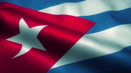 sorguç : Cuba flag waving in the wind. National flag of Cuba. Sign of Cuba seamless loop animation. 4K Stok Video