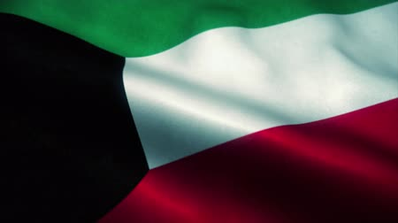 эмблема : State of Kuwait flag waving in the wind. National flag of Kuwait. Sign of Kuwait seamless loop animation. 4K Стоковые видеозаписи