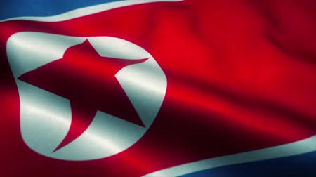 нападение : North Korea flag waving in the wind. National flag of North Korea. Sign of North Korea seamless loop animation. 4K