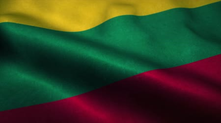 official : Lithuania flag waving in the wind. National flag of Lithuania. Sign of Lithuania seamless loop animation. 4K Stock Footage