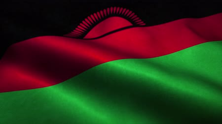 malawi : Malawi flag waving in the wind. National flag of Malawi. Sign of Malawi seamless loop animation. 4K Stock Footage