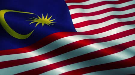 malásia : Malaysia flag waving in the wind. National flag of Malaysia. Sign of Malaysia seamless loop animation. 4K